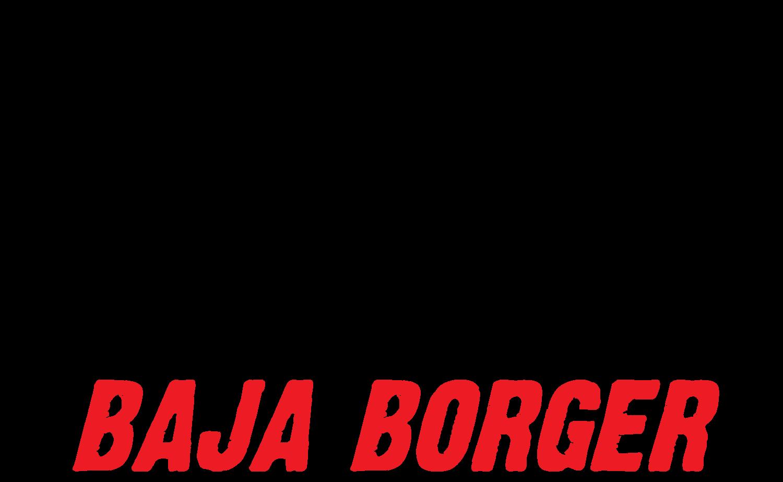 Roompot Baja Borger